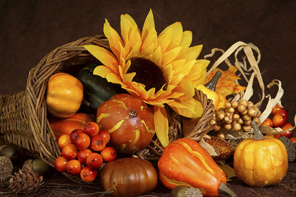image of thanksgiving cornucopia with sunflower, gourds and cranberries